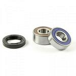 1997-2004 BMW R1100S Front Wheel Bearing and Seal Kit