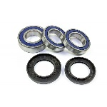 1999-2007 Suzuki GSXR1300R Hayabusa Rear Wheel Bearing and Seal Kit