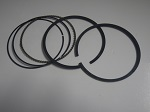 EZGO RXV Golf Cart 2008-Up Engine Piston Ring Set Standard Bore | 603530